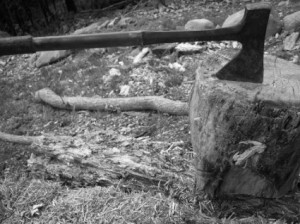 axe_in_stump_197614